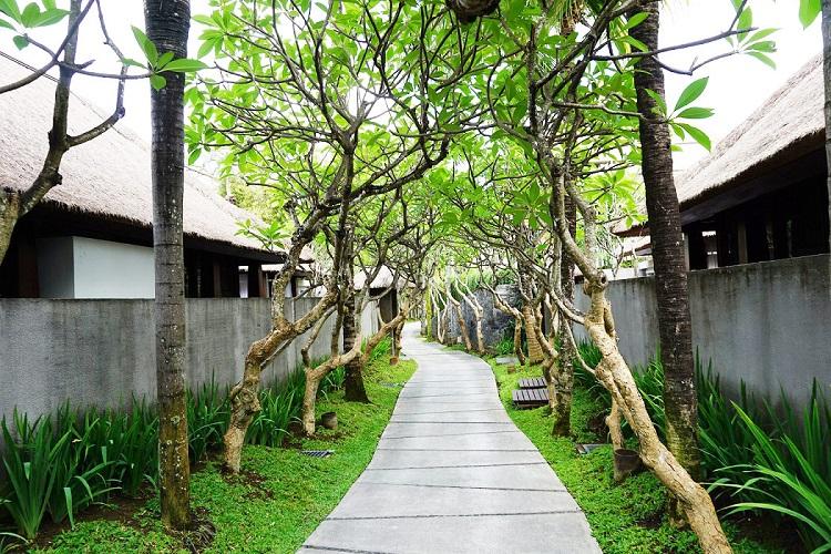 リゾートの道